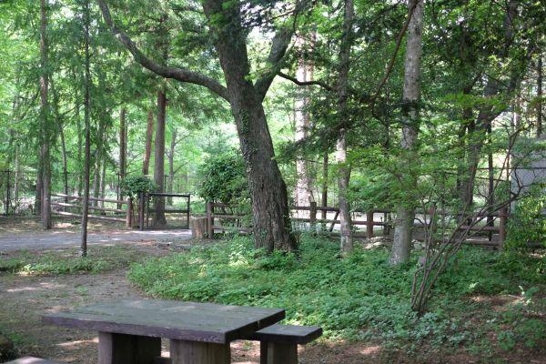 道の駅 明治の森